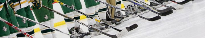 cropped-cropped-2011-01-05-016-huron-hockey-vs-saline1.jpg